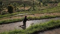 Bali di Jalur yang Tepat untuk Buka Pintu buat Wisman Lagi