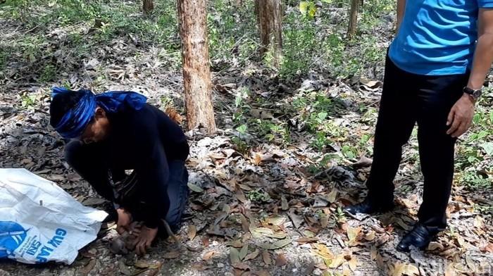 Salah seorang suku Baduy saat menangkap monyet di Gunungkidul