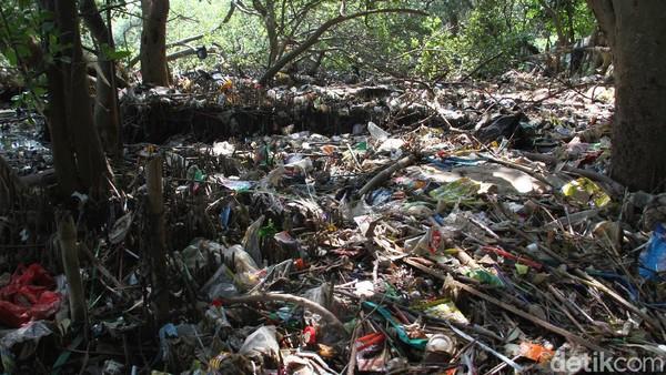 Berbagai upaya untuk terus melestarikannya tetap bergulir hingga sekarang. Di sisi lain, ancaman akan keberadaan kawasan ekosistem hutan pantai ini juga harus menjadi perhatian, terutama adanya perubahan alih fungsi lahan yang merubah fungsi kawasan ekosistem menjadi tempat hunian atau kawasan bisnis. Selain itu keberdaaan sampah yang sampai saat ini masih terlihat di sekitar kawasan hutan mangrove yang dapat menganggu proses keberlangsungan hidupnya.