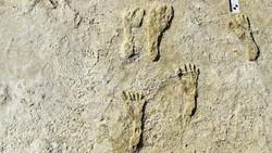 Jejak Kaki Tertua di Dunia Ditemukan di AS, Usianya 22 Ribu Tahun!