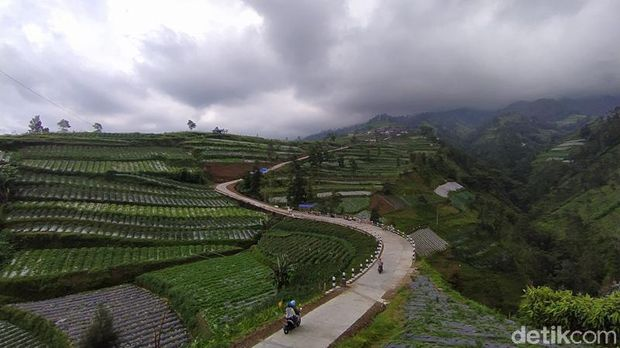 Pemandangan di lereng Gunung Merbabu wilayah Kabupaten Magelang, Jawa Tengah, sangat indah. Selain pemandangan alam, traveler bisa melihat tanaman sayuran yang menghijau.