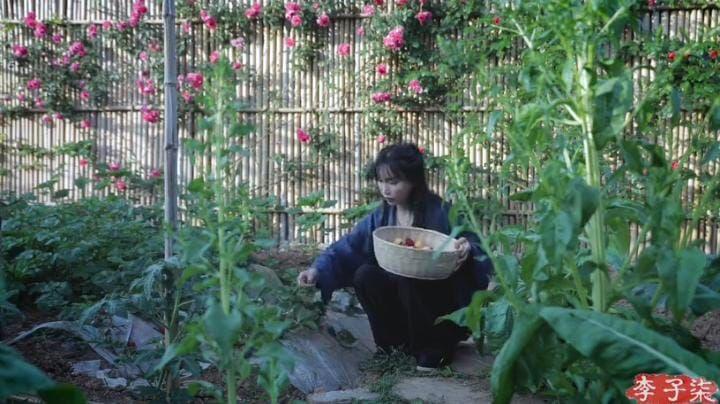 Li Ziqi Menghilang, Ini 5 Fakta YouTuber yang Hidup di Desa dan Jago Masak Ini