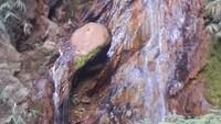 Penampakan Lokasi Ditemukannya Bocah Pendaki di Gunung Guntur