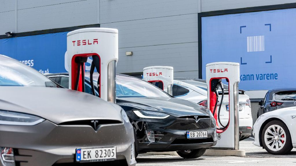 Pengusaha Rental Borong 100.000 Unit Tesla, Nilainya Ditaksir Rp 56 Triliun!