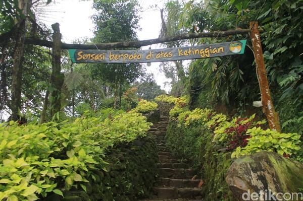 Terdapat kanopi trail berupa jembatan gantung panjang yang berwarna-warni yang baru dibuka pada akhir tahun 2019 di Rangon Hills Bogor. Destinasi itu langsung dijadikan tempat favorit bagi para pengunjung (Foto: Luthfi Hafidz/detikcom)
