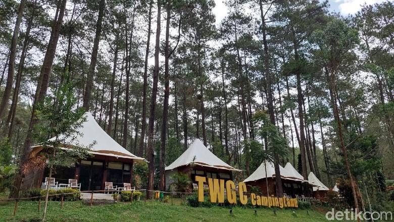 TWGC Camping Land