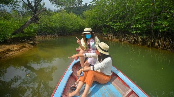 Wisata hutan mangrove menjadi salah satu daya tarik wisata alam yang ditawarkan di kawasan wisata bahari terpadu (KWBT) Mandeh. ANTARA FOTO/Iggoy el Fitra.