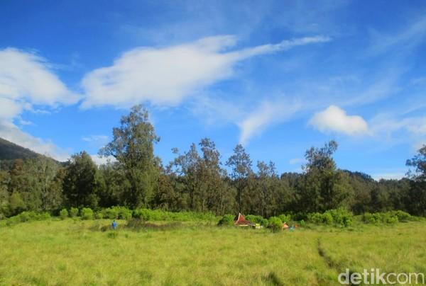 Ada beberapa objek dan tujuan sangat menarik di dua jalur pendakian Pegunungan Argopuro. Yakni sabana luas nan eksotis Cikasur jika lewat jalur Baderan, Situbondo, dan danau Taman Hidup kalau lewat Bremi, Probolinggo.(Chuk Shatu W/detikcom)