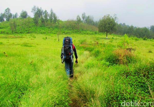 Oleh sebab itu, pegunungan ini disebut trek pendakian terpanjang di pulau Jawa. (Chuk Shatu W/detikcom)