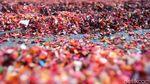 Industri Daur Ulang Sampah Menanti Insentif