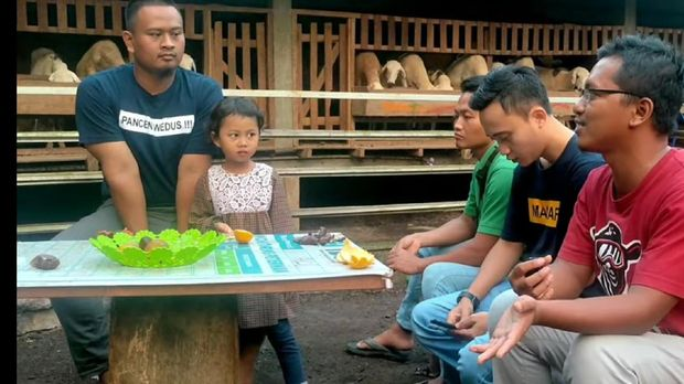 Cerita 3 Anak Milenial yang Sukses dan Bangga Jadi Peternak Kambing