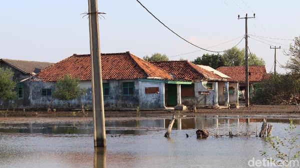Apabila menggunakan perahu, traveler bisa menjangkau Tanjung Priok dari Muara Gembong hanya dengan waktu satu jam saja. Bahkan, kawasan di Kabupaten Bekasi ini juga berbagi nasib dengan Jakarta Utara soal ancaman tenggelam (Randy/detikTravel)