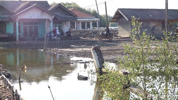 Banjir yang ada di desa ini diakibatkan oleh rob dan diperparah akibat abrasi. Hal itu diperburuk dengan hilangnya kawasan mangrove akibat ulah manusia (Randy/detikTravel)