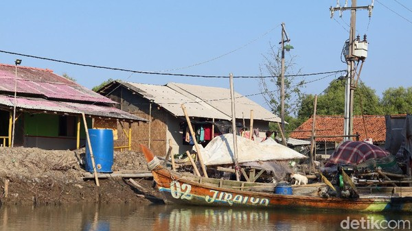 Mayoritas warga setempat berprofesi sebagai nelayan hingga pencari udang di empang atau tambak. Namun, profesi mereka kian teruji akibat ancaman abrasi dan rob (Randy/detikTravel)