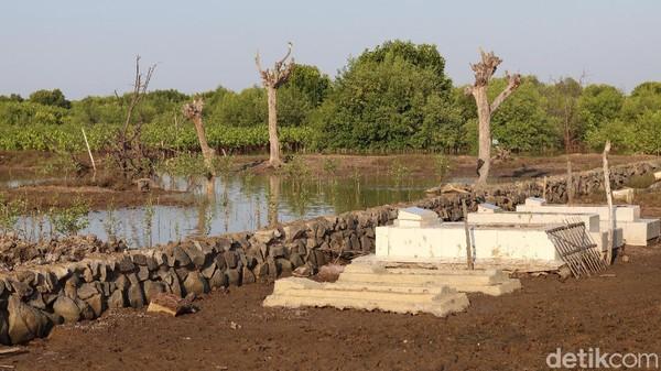 Pantai Desa Bahagia bertetangga langsung dengan kawasan mangrove dan berada di kawasan resapan air(Randy/detikTravel)