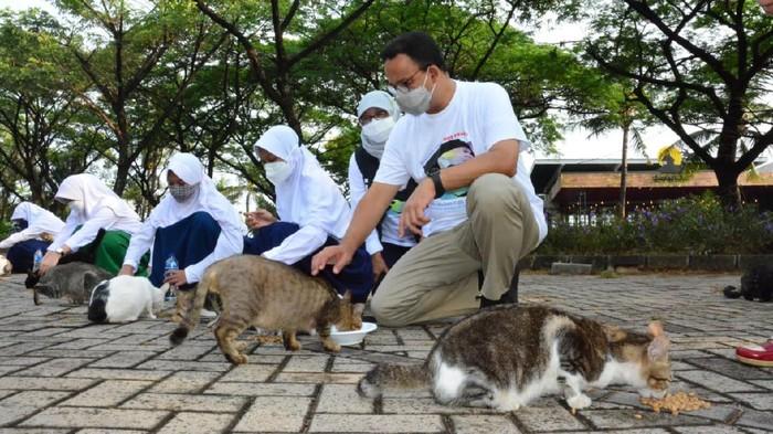 Gubernur DKI Jakarta Anies Baswedan menghadiri hari Rabies Sedunia di Ancol, Jakarta Utara. (Dok. Pemprov DKI Jakarta)