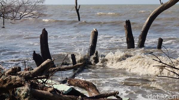 Selain itu, ombak yang kian dekat ke permukaan pantai juga menyulitkan nelayan. Alhasil, banyak yang jadi lebih jarang melaut karena ombak yang sering ganas (Randy/detikTravel)