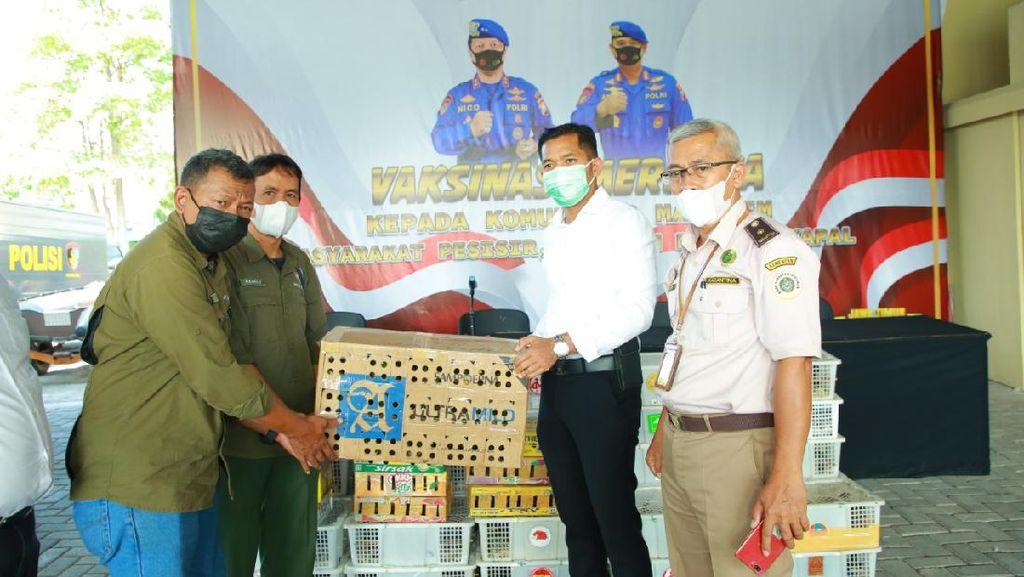 Penyelundupan 1.080 Burung Dilindungi dari Kalimantan ke Surabaya Digagalkan