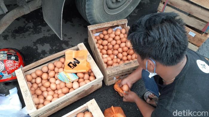Peternak Tasik bagikan telur gratis kepada warga.