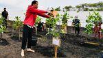 Momen Jokowi Tanam Mangrove Sambil Nyeker di Bengkalis