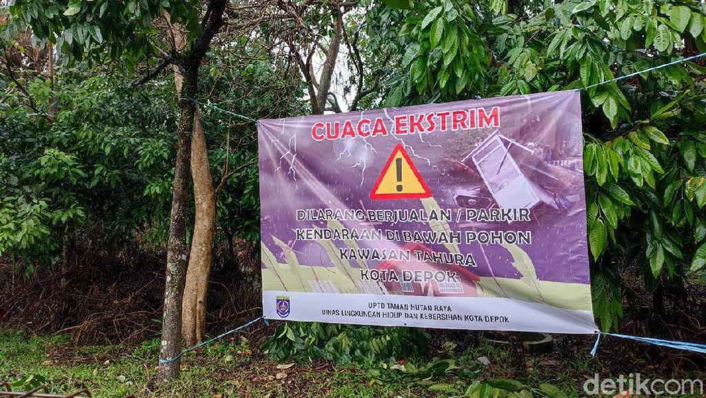 Waspada Cuaca Ekstrem, Warga Depok Diminta Tak Parkir-Jualan di Bawah Pohon