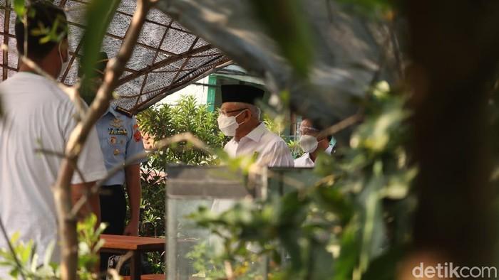 Wapres Maruf Amin saat mengunjungi urban farming di Kota Bandung