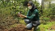 Foto: Trip Jelajahi Kebun Kopi di Bandung Selatan