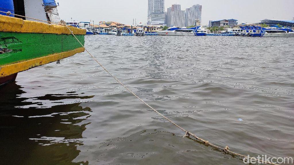 Lihat! Ini Laut Ancol dan Angke Jakarta yang Tercemar Parasetamol