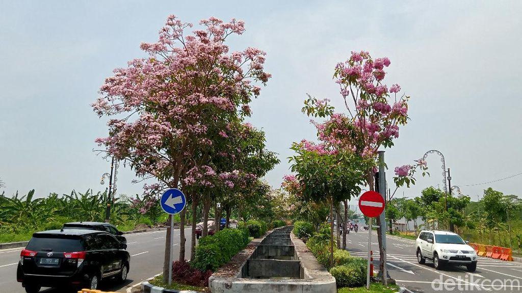 Melihat Surabaya Berasa Negeri Sakura