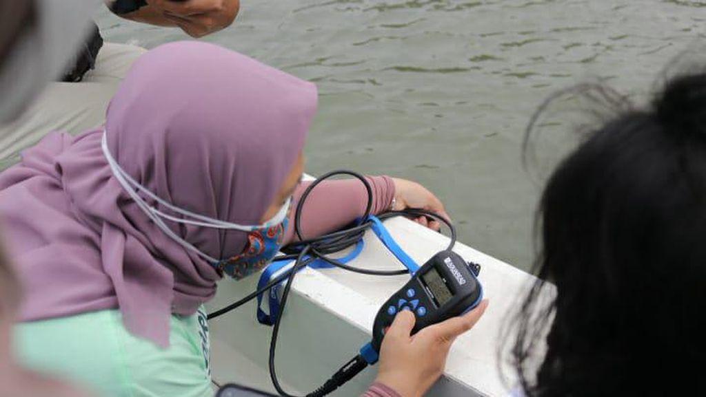 Momen DLH Ambil Sampel Air Tercemar Paracetamol di Teluk Jakarta