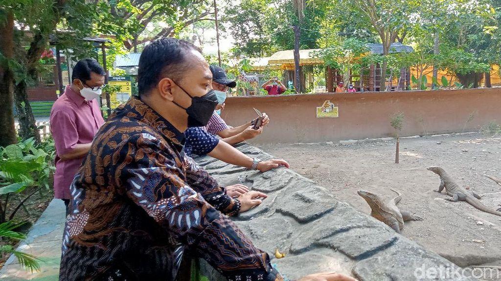 Kebun Binatang Surabaya Dibuka Besok, Anak-anak Boleh Masuk