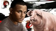 Borju dan Babi Piaraan