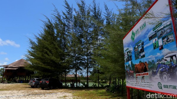 Sebagai informasi, detikcom bersama MIND ID mengadakan program Jelajah Tambang berisi ekspedisi ke daerah pertambangan Indonesia. detikcom menyambangi kota-kota industri tambang di Indonesia untuk memotret secara lengkap bagaimana kehidupan masyarakat dan daerah penghasil mineral serta bagaimana pengolahannya.