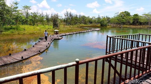 detikcom pun berkesempatan mendatangi kawasan konservasi ini. Sesampainya di kawasan ini, pohon-pohon yang baru saja ditanam dan beberapa kolam besar sudah menyambut pengunjung.