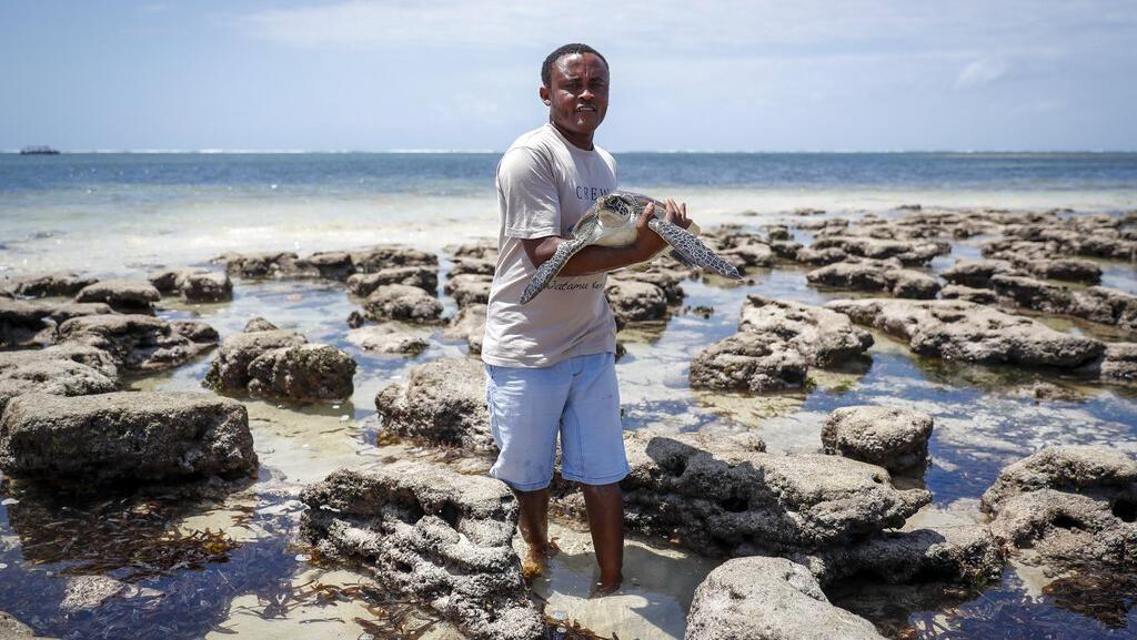 Potret Mantan Akuntan yang Kini Jadi Penyelamat Penyu di Kenya