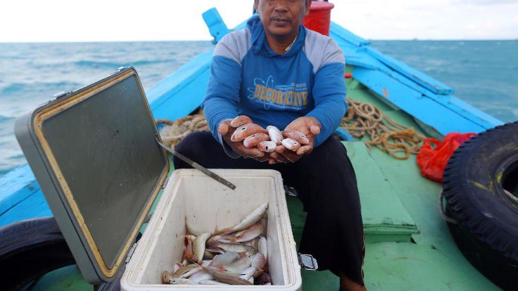 Senyum Nelayan Pulau Bangka, Tangkapan Naik 80% Gegara Fishing Ground