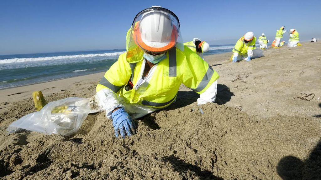 Aksi Bersih-bersih Pantai California dari Tumpahan Minyak