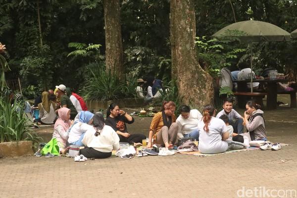 Sejumlah warga menggelar tikar di bawah pohon-pohon besar yang ada di Tahura.(Wisma Putera/detikcom)