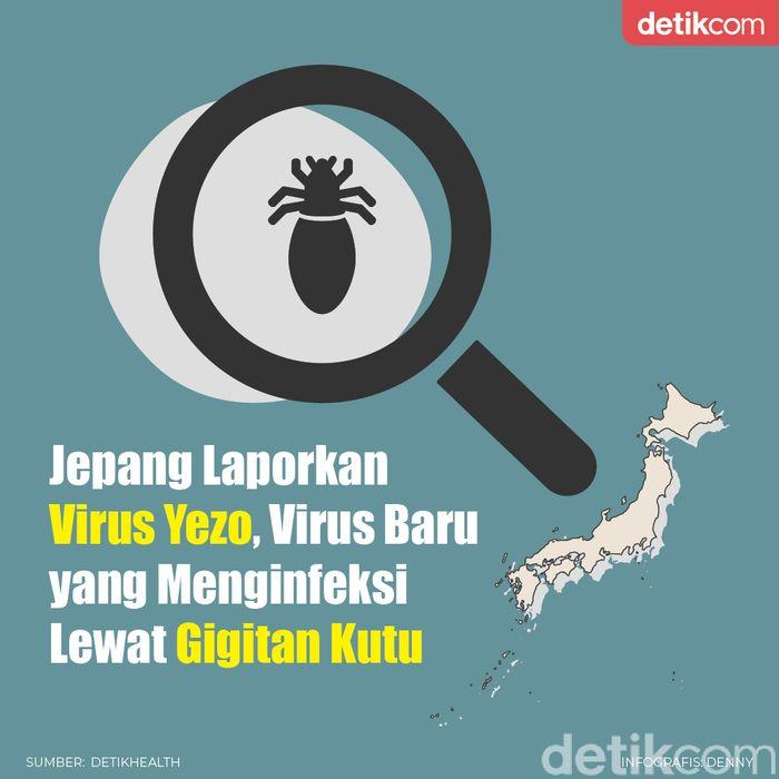 infografis virus Yezo