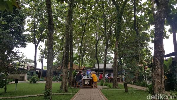 Suasananya sangat sejuk dan asri. Rerumputan hijau yang tertata rapi, pohon jati yang berjejer membuat tempat makan outdoor ini rindang.
