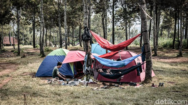 Camping ground Geger Bintang Matahari cocok untuk yang pemula yang sama sekali belum pernah berkemah. Untuk menikmati suasana kemah di Geger Bintang Matahari, pengunjung cukup merogoh kocek Rp 20 ribu. Sementara jika hanya ingin sekadar hiking, cukup mengeluarkan uang Rp 10 ribu saja. (Whisnu Pradana/detikTravel)