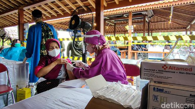 Vaksin with a view di Kulon Progo
