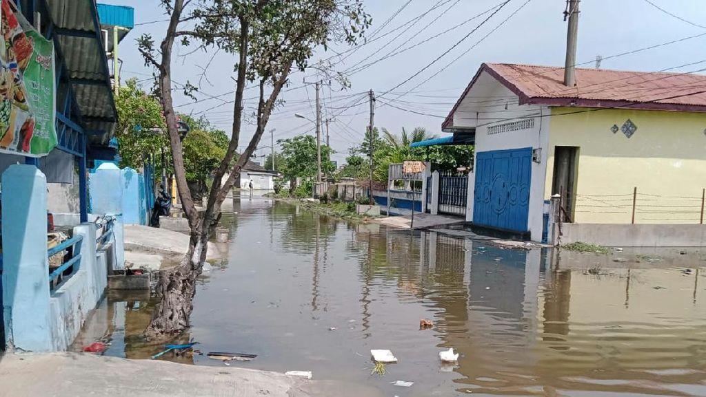 Banjir Rob di Medan Rendam 15 Ribu Rumah, 70 Ribu Warga Terdampak