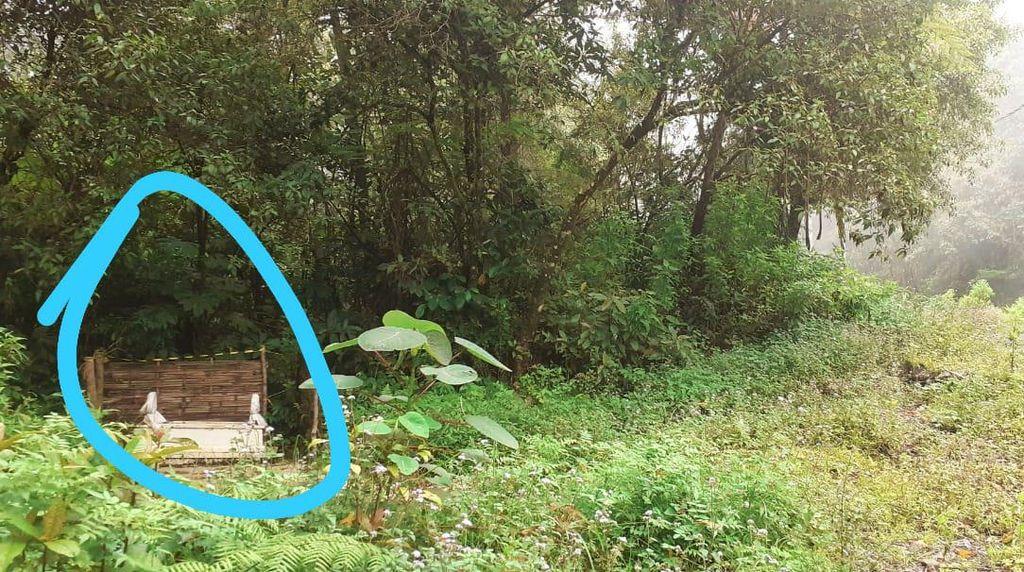 Muncul Makam Misterius di Jalur TWA Kawah Ijen, Petilasan Raja Bali?