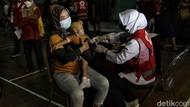 Warga RI Kian Kebal COVID, Pemerintah Bakal Survei Antibodi Tiap 6 Bulan