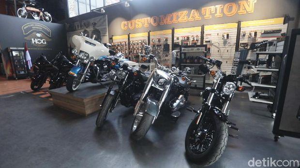 Dealer Harley Davidson Anak Elang