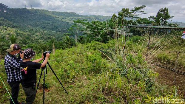 Desa Jatimulyo ramah burung