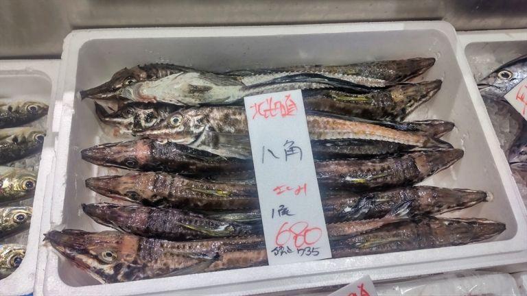 Ikan Menyeramkan Ini Ternyata Bisa Dibuat Sashimi