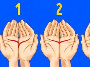 Tes: Gabungkan Kedua Telapak Tanganmu, Garis Pada Gambar Mana Yang Sesuai?