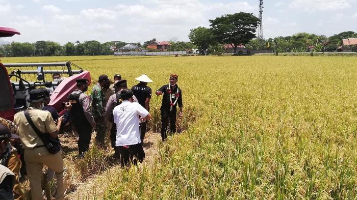 Mentan Syahrul Yasin Limpo kunker ke Sukoharjo